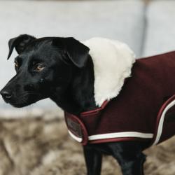 Kentucky Dog Rug Heavy Fleece